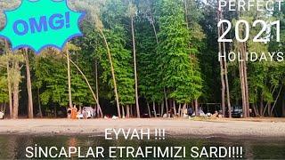 RÜYA GİBİ BİR KOY ( SARIDANA) Sincaplar, Arılar / Marmaris'te 2 Gün Ücretsiz Kamp Yaptık !!
