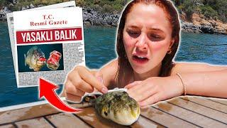 KATİL BALON BALIĞI YAKALADIM!!! (LÜKS YATTA TATİL)