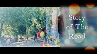 Gökova Ağaçlı Yol | Story of the road | Turkey, Muğla, Marmaris