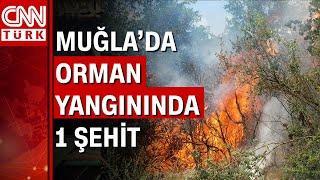 Marmaris'te orman yangını! Bir kahraman personel şehit oldu
