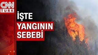 Muğla-Ula Belediye Başkanı Özay Türkler'den flaş yangın açıklaması