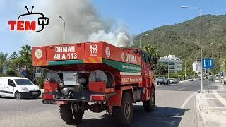 (2) #sondakika Marmaris'te Orman Yangını etkili rüzgardan dolayı kontrol altına  alınamıyor